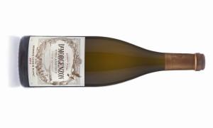 DeMorgenzon Chenin Blanc Reserve 2013 bottle shot kopi